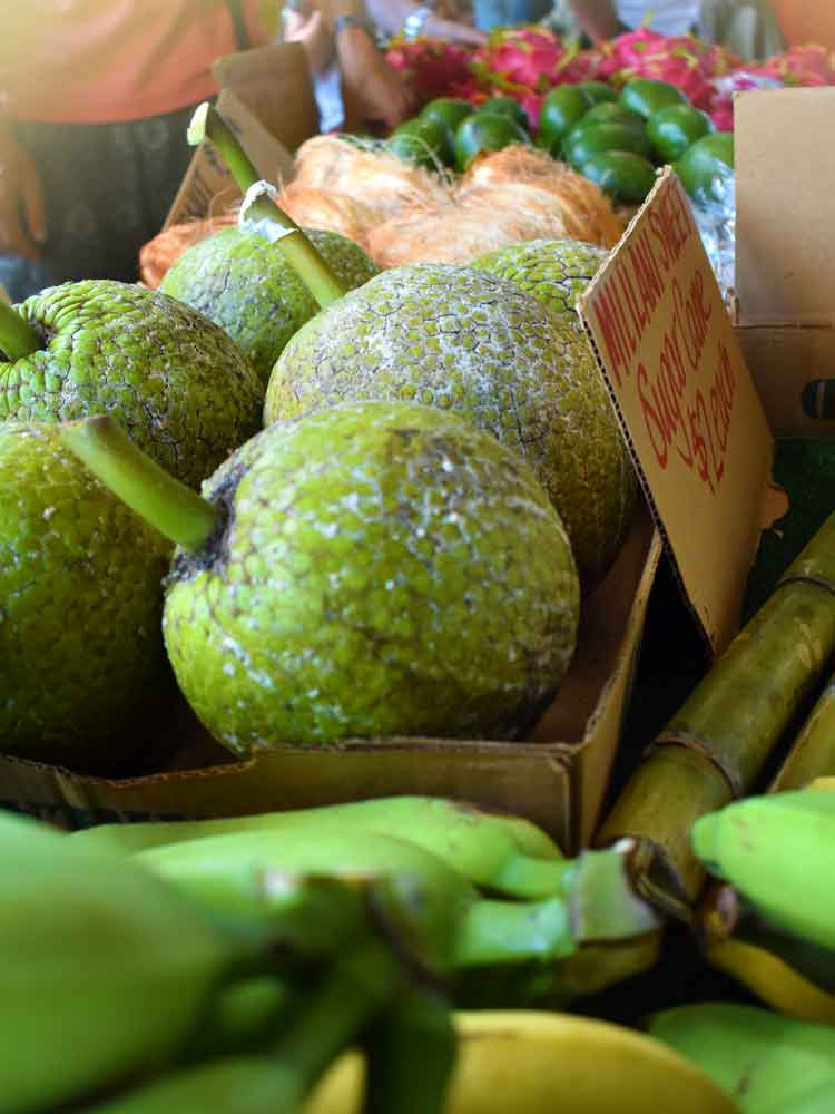 Senior Farmers' Market Nutrition Program