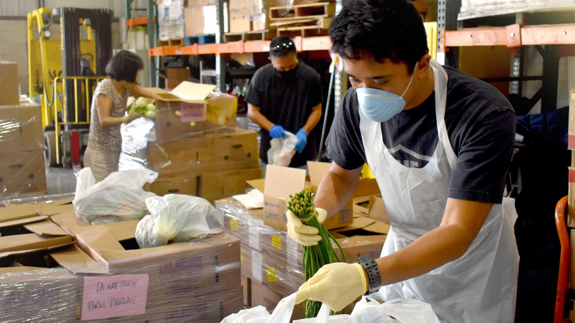 Hawaii Foodbank Volunteer Elijah Dacanay